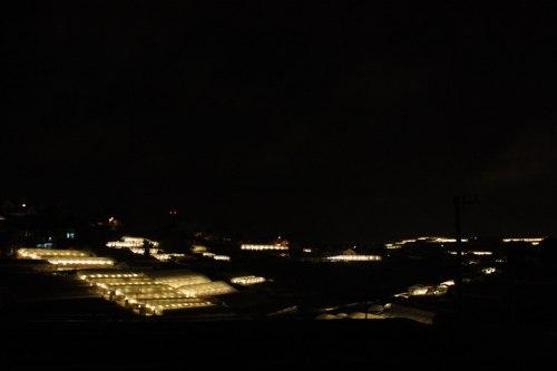 Nhà kính về đêm
