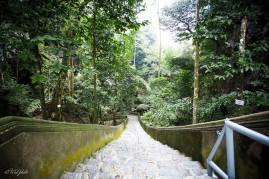 Lối xuống động Hương Tích