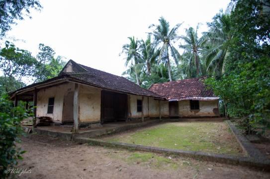 Nhà cổ trăm năm